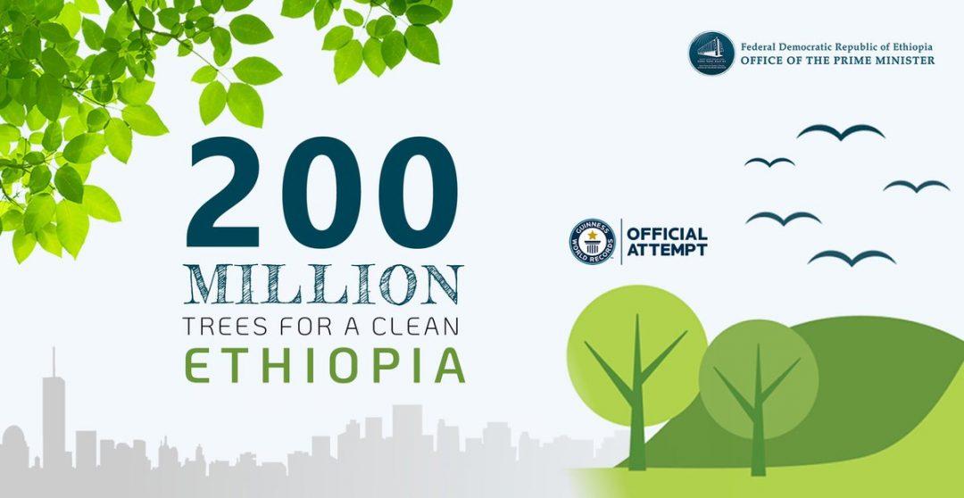 200 million trees